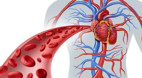 ما هي مشاكل الأوعية الدموية وعلاجها و ما هي التقنيات المناسبة لذلك