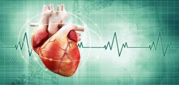 هل القسطرة القلبية مؤلمة وكيفية إجرائها