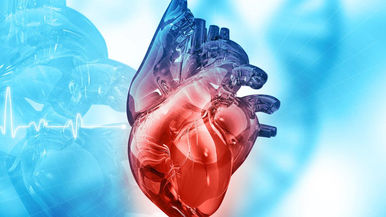 هل عملية القسطرة القلبية خطيرة ؟ وأسباب إجراءها؟