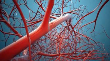 ما علاج الشعيرات الدموية