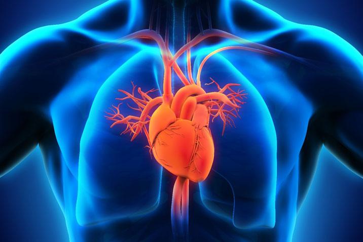 رسم القسطره القلبيه – مركز شفاء