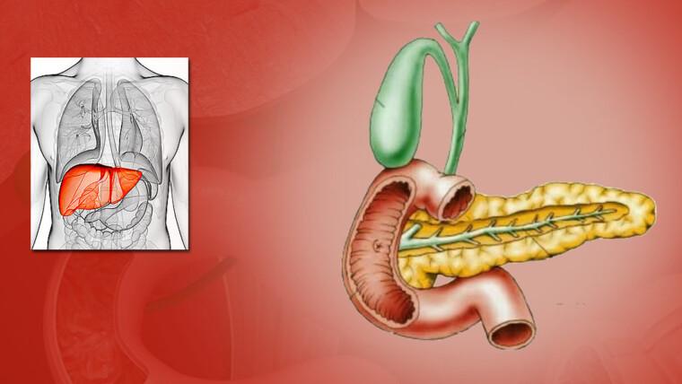 أشهر 10 أعراض انسداد القناة المرارية وكيفية علاجها | شفاء